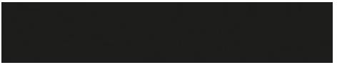 Wisebee Logo